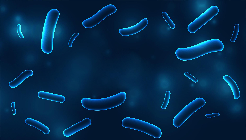 Zapobieganie zakażeniom bakteriami z rodzaju Legionella – zalecenia dot. ponownego otwierania budynków użyteczności publicznej i zamieszkania zbiorowego po wydłużonym przestoju lub ograniczonej eksploatacji